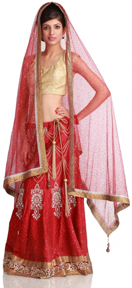Indian Designer Clothes From India the Indian designer wear